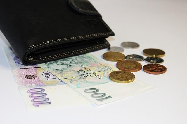 peníze s peněženkou