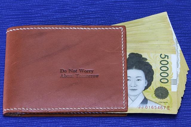peněženka s nápisem a obrázek Japonky