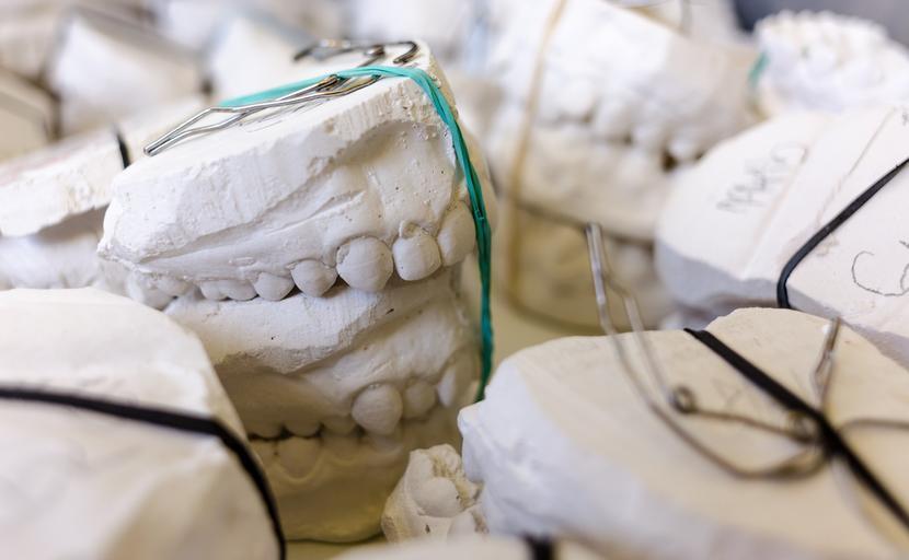 modely zubů