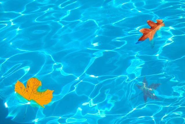 listy ve vodě